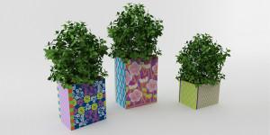 Display Planter_01