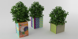 Display Planter_02